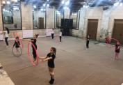 Центр Художественной Гимнастики «Чемпионы»